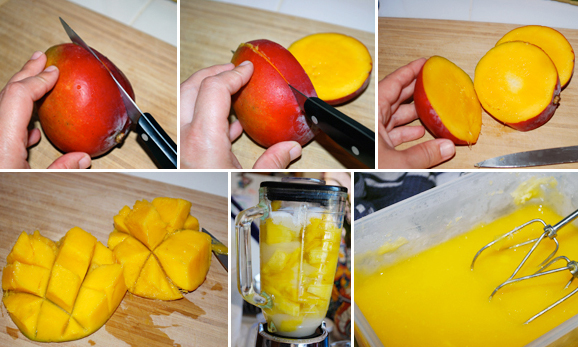 Mango Sorbet Detail