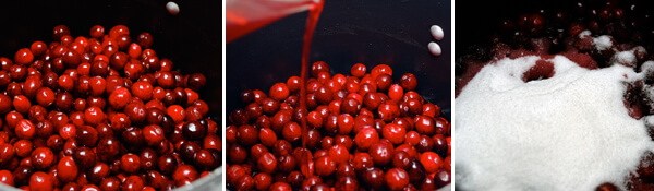 Pomegranate-Cranberry Sauce Detail