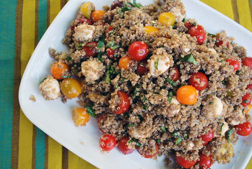 Quinoa the gluten free thanksgiving side dish by family spice