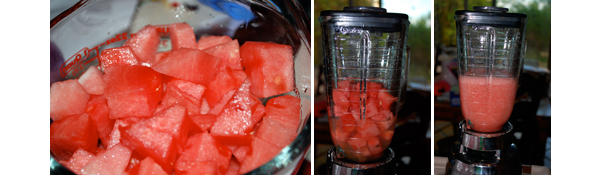 Watermelon Margarita by FamilySpice.com