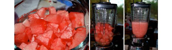Watermelon Margarita by FamilySpice.com