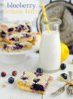 Blueberry Lemon Bars by FamilySpice.com
