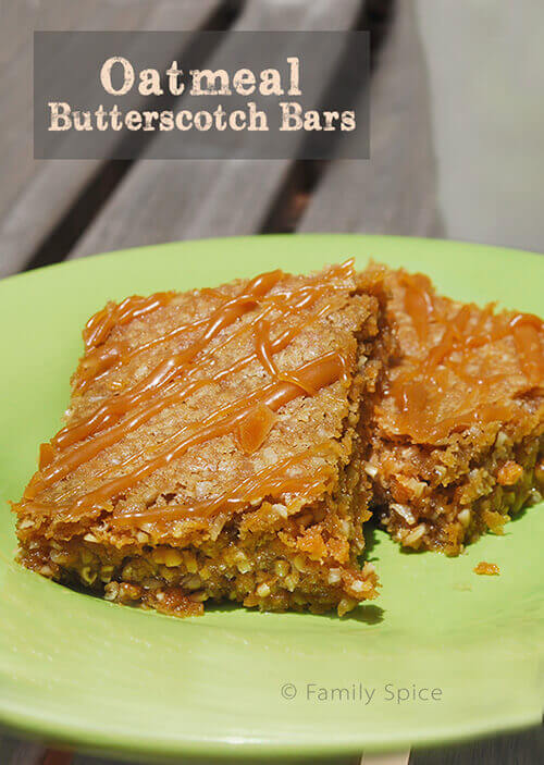 Ooey and Gooey Oatmeal Butterscotch Bars by FamilySpice.com