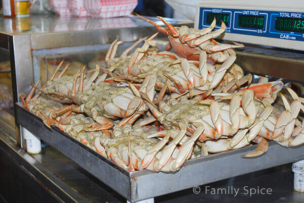 Crabs in Fisherman's Wharf by FamilySpice.com