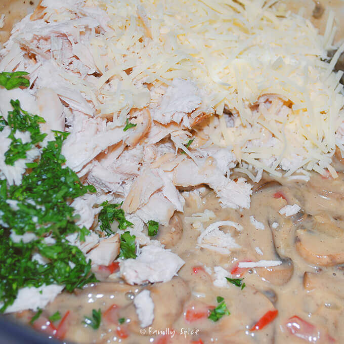 Cooking up  Turkey Tetrazzini by FamilySpice.com