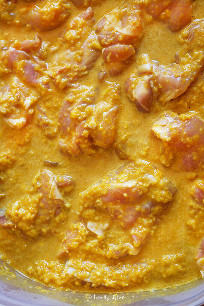 Marinating Chicken for Chicken Satay with Red Pepper Sauce by FamilySpice.com