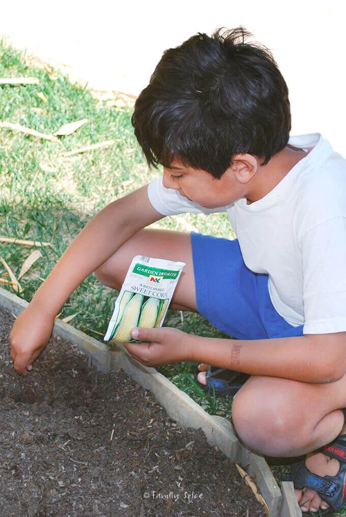 Gardening with Kids by FamilySpice.com