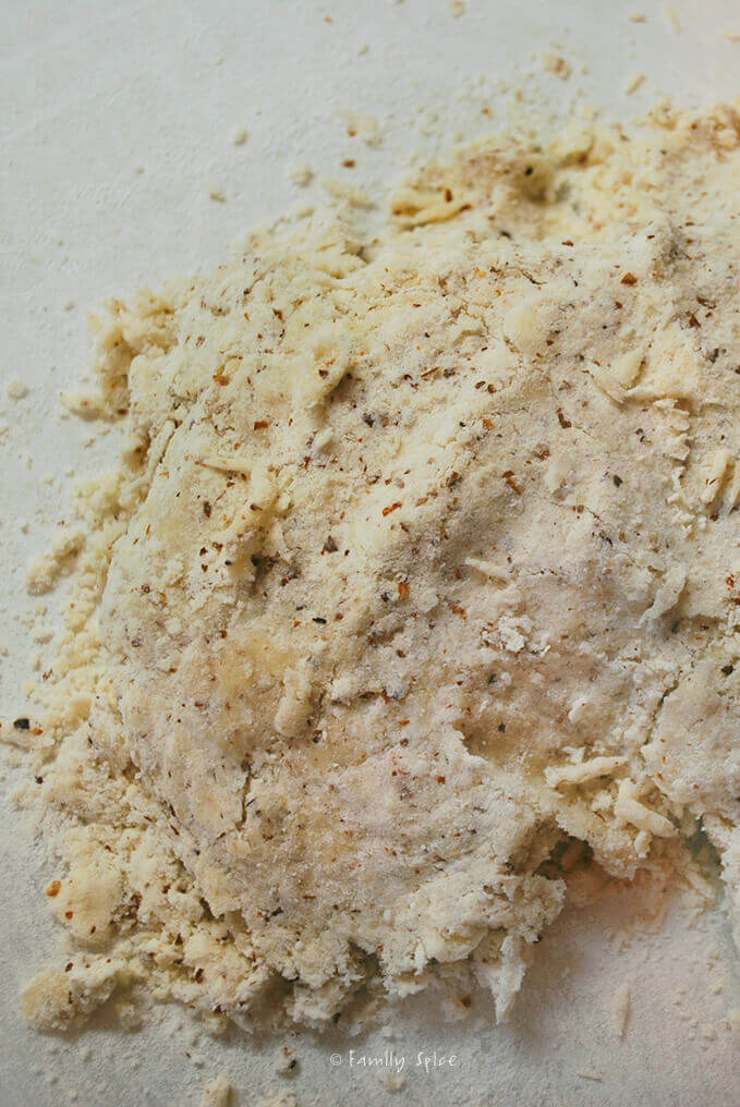 Making Dough for Apricot Thyme Galette with Cornmeal Crust by FamilySpice.com