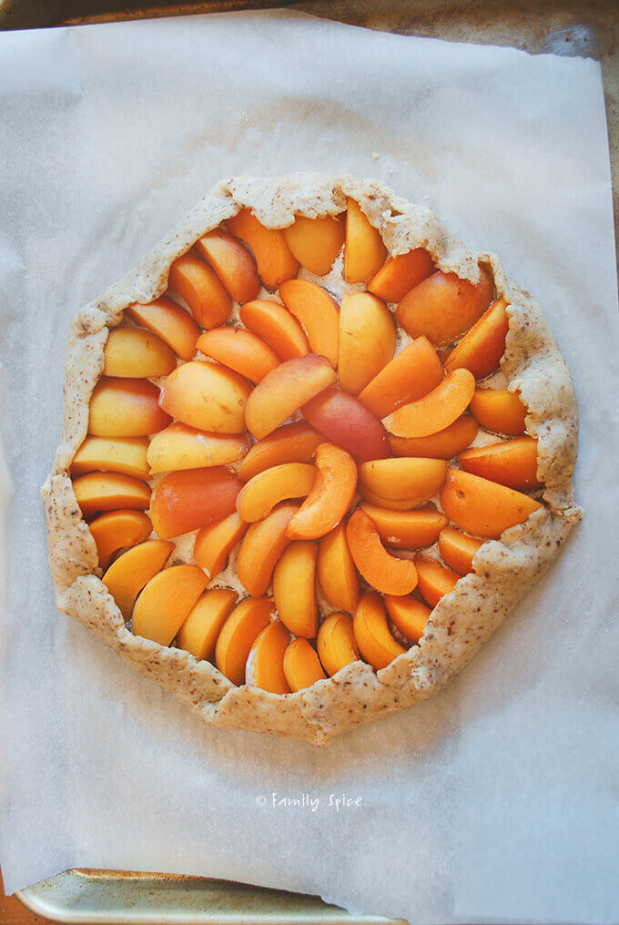 Assembling Apricot Thyme Galette with Cornmeal Crust by FamilySpice.com