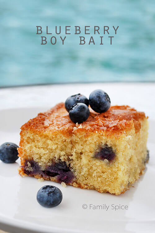 Blueberry Boy Bait by FamilySpice.com