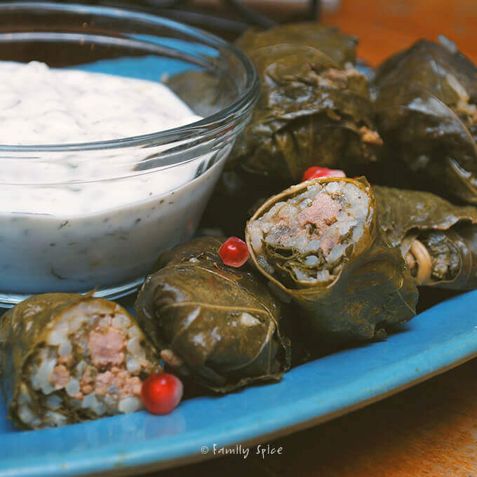 Persian Stuffed Grape Leaves: Beef and Pomegranate Dolmeh by FamilySpice.com
