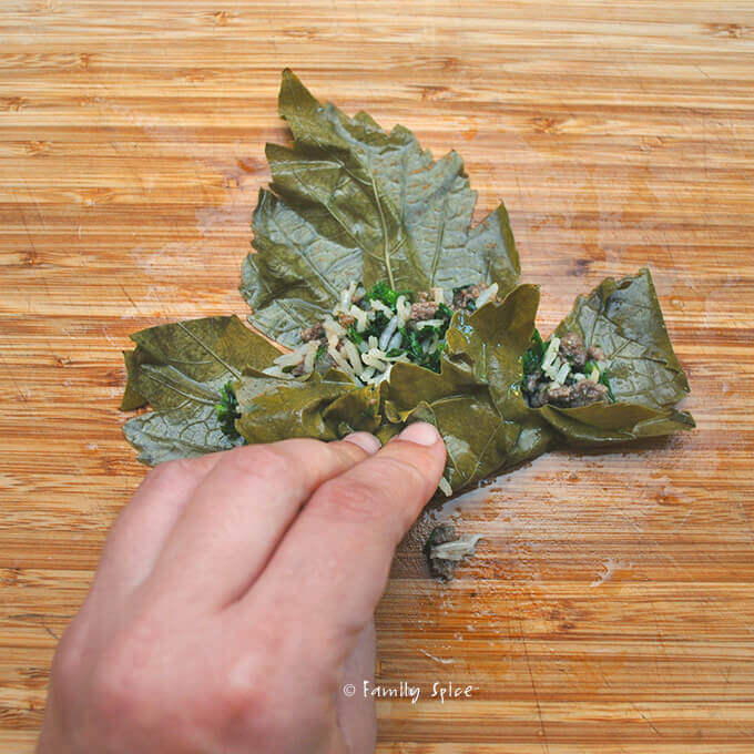 Assembling Persian Stuffed Grape Leaves: Beef and Pomegranate Dolmeh by FamilySpice.com