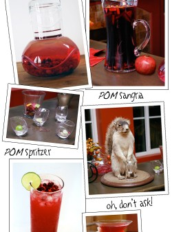 Pomegranate Cocktails for My Very Special POM Party by FamilySpice.com