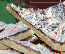 Chocolate Peppermint Bark Cookies by FamilySpice.com