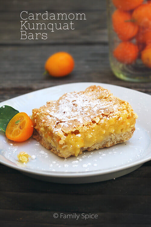 Cardamom Kumquat Bars by FamilySpice.com