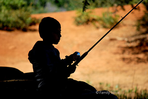 My boy fishing by FamilySpice.com