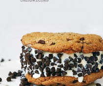 The Best Chocolate Chip Ice Cream Sandwiches by FamilySpice.com
