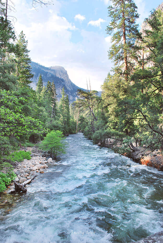 Yosemite National Park by FamilySpice.com