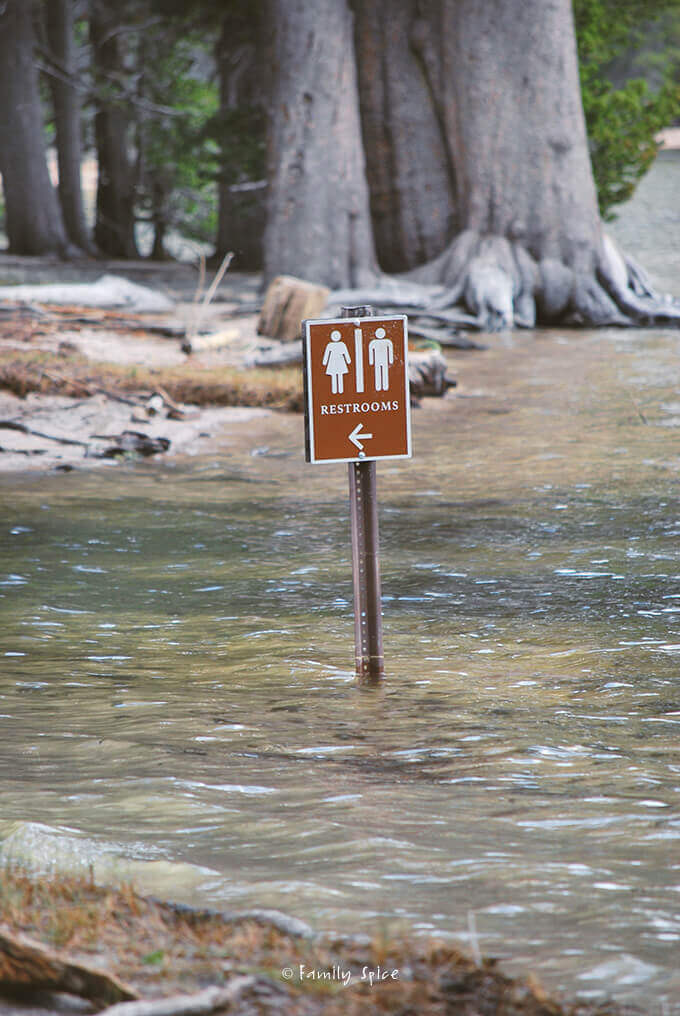 Flooded campground in Tioga Pass, Yosemite Valley by FamilySpice.com