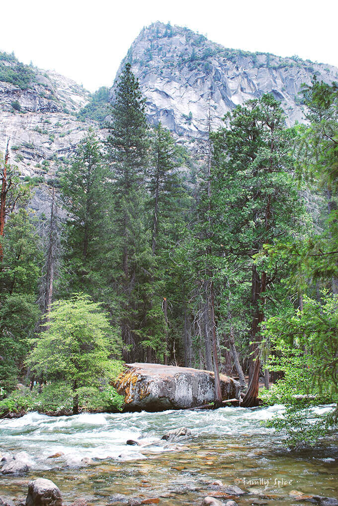 Yosemite, California by FamilySpice.com