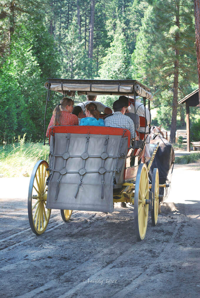 Wawona Carriage Ride, Yosemite National Park by FamilySpice.com