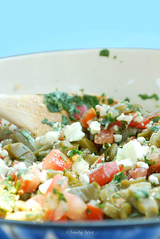 Cactus Salad with Feta by FamilySpice.com