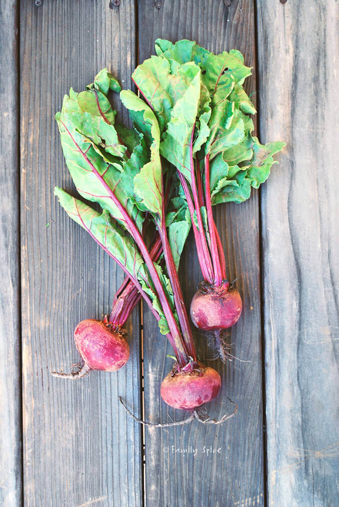 Fresh Beets by FamilySpice.com