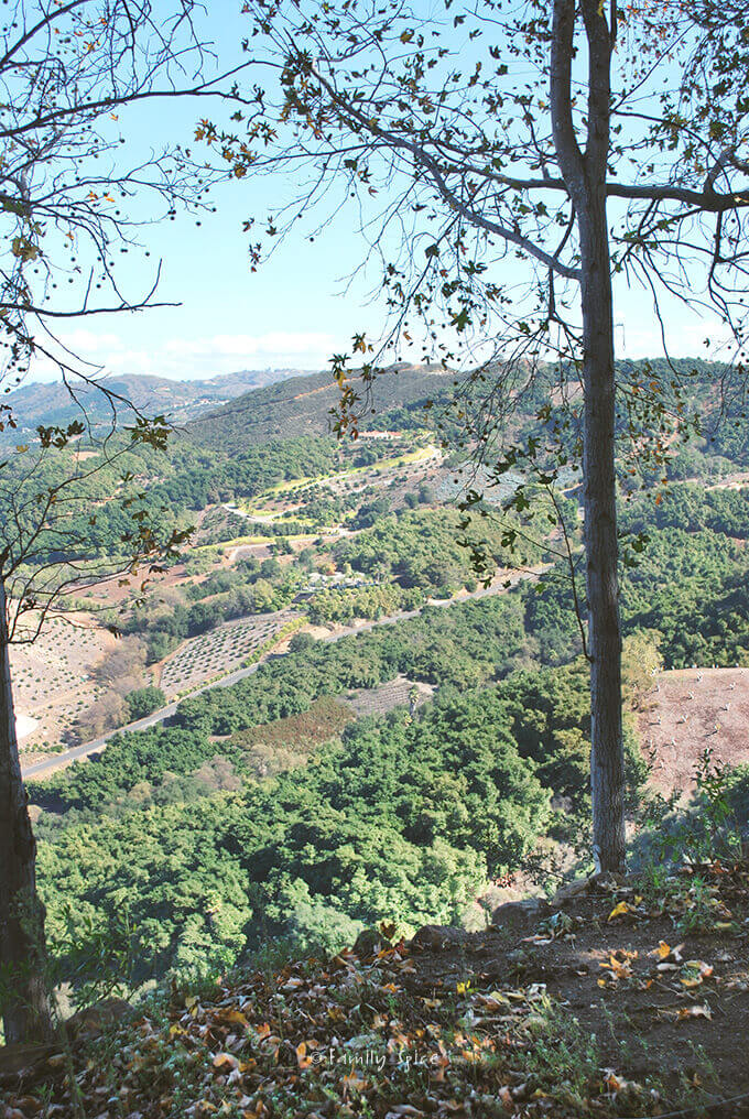 Fallbrook Valley, California by FamilySpice.com