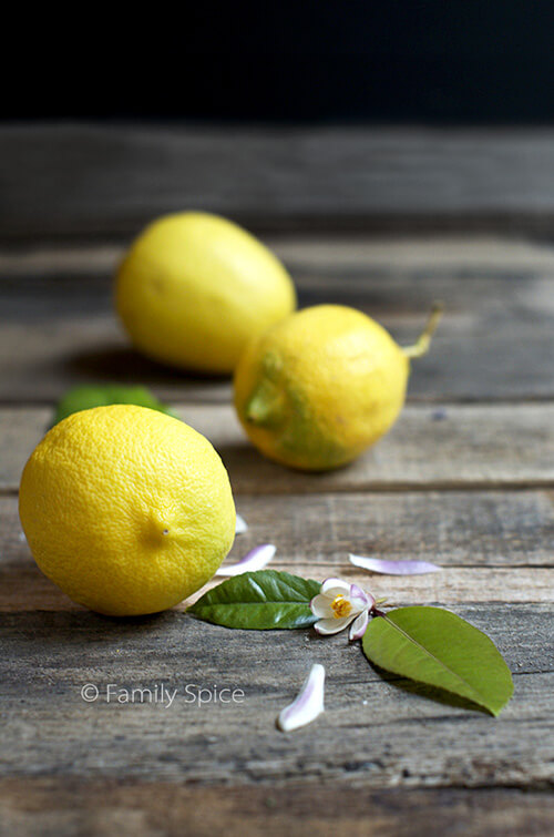 Lemons by FamilySpice.com