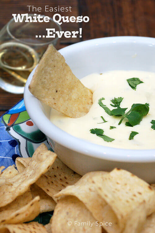 The Easiest Two Ingredient White Queso by FamilySpice.com