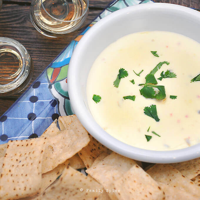 The Easiest 2 Ingredient White Queso by FamilySpice.com