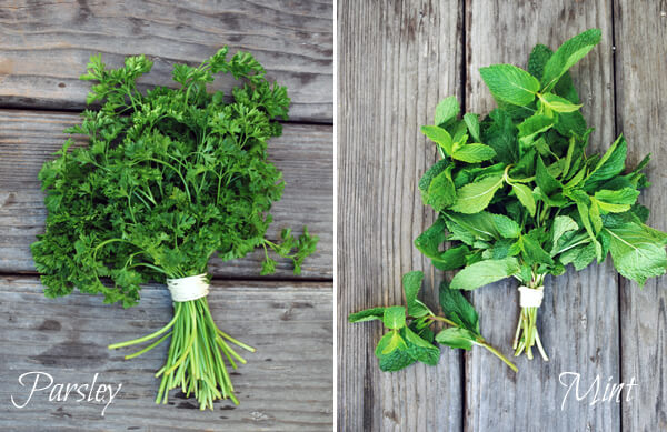 Fresh parsley and mint