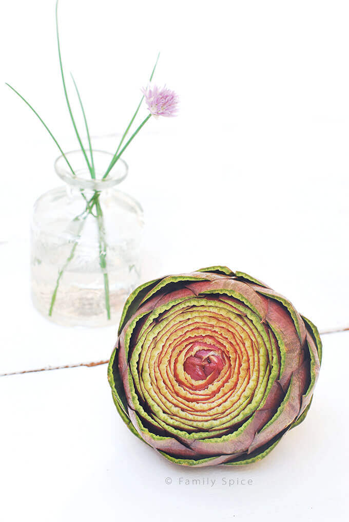 Sangria Artichoke by FamilySpice.com