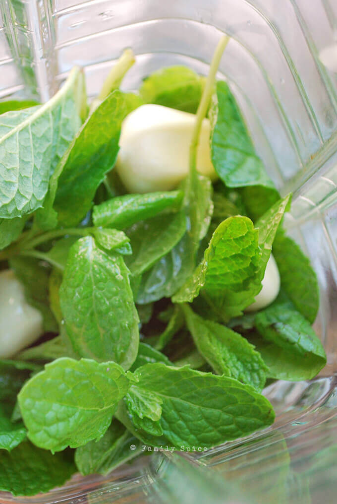 Mint and garlic in the blender for marinade by FamilySpice.com