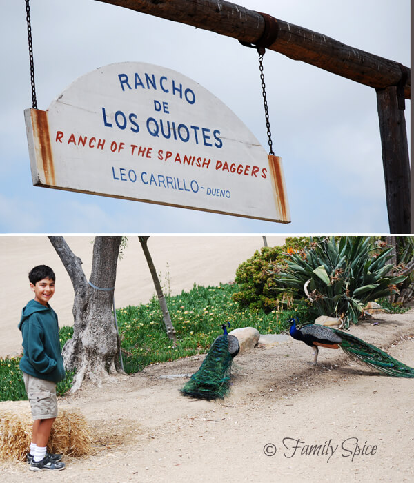 The Leo Carillo Ranch in San Diego