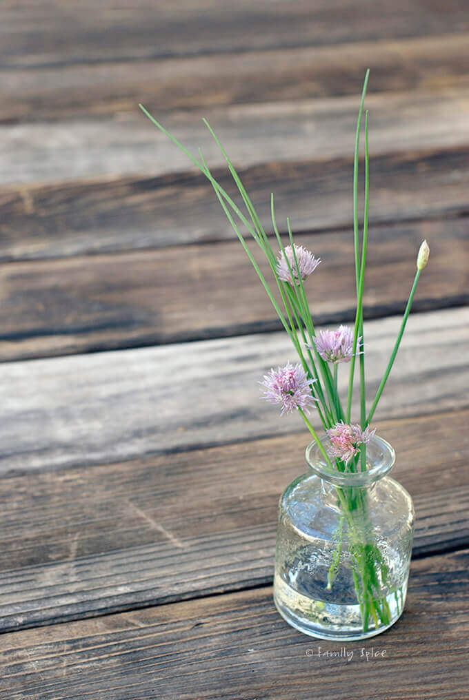 Fresh Chives and Chive Blossoms by FamilySpice.com