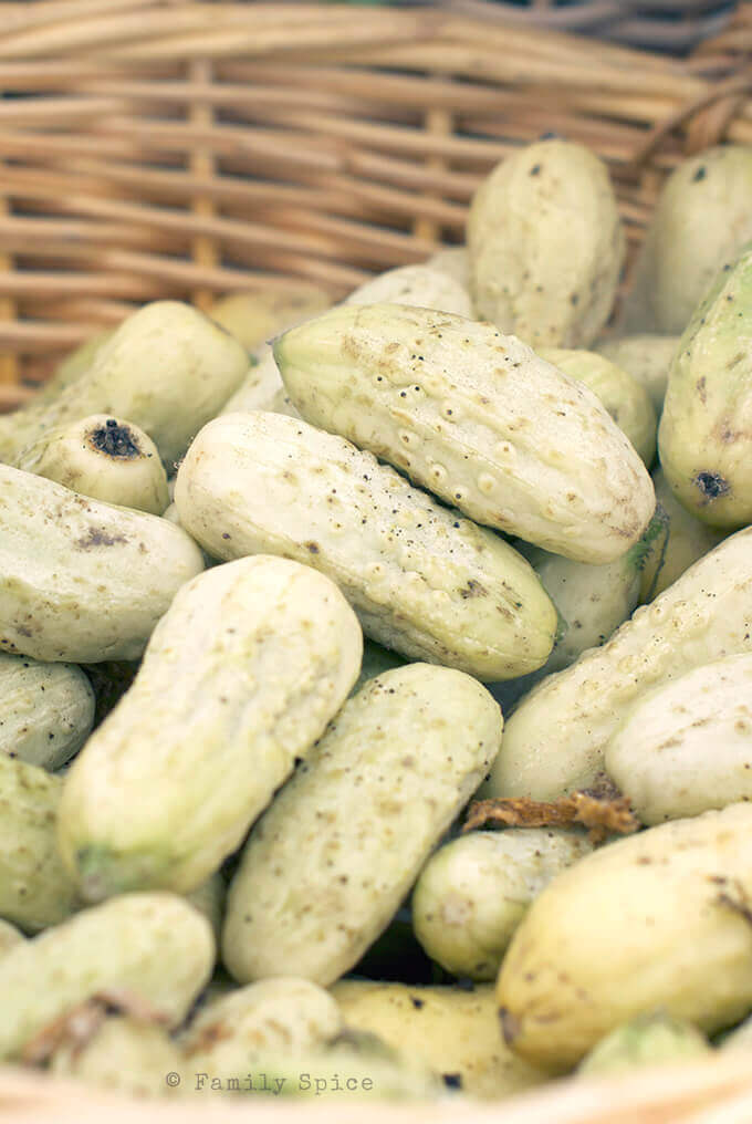 White cucumbers at the Farmer's Market by FamilySpice.com