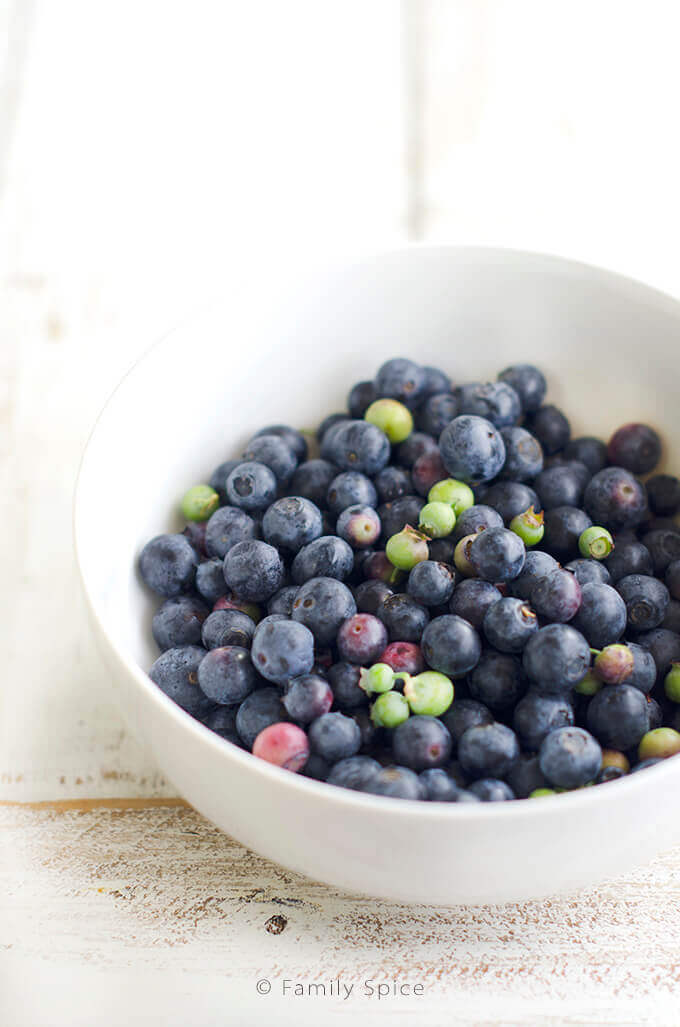 Fresh blueberries in a white bowl -- FamilySpice.com