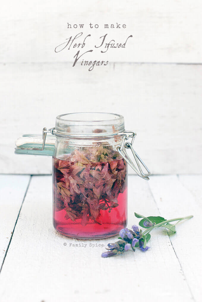 How to Make Herb Infused Vinegars, like this Sage Blossom Vinegar by FamilySpice.com