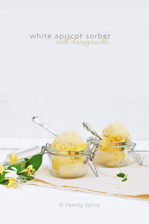 White Apricot Sorbet with Honeysuckle by FamilySpice.com
