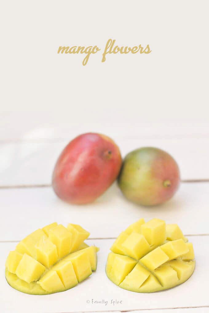 Mango Flowers by FamilySpice.com