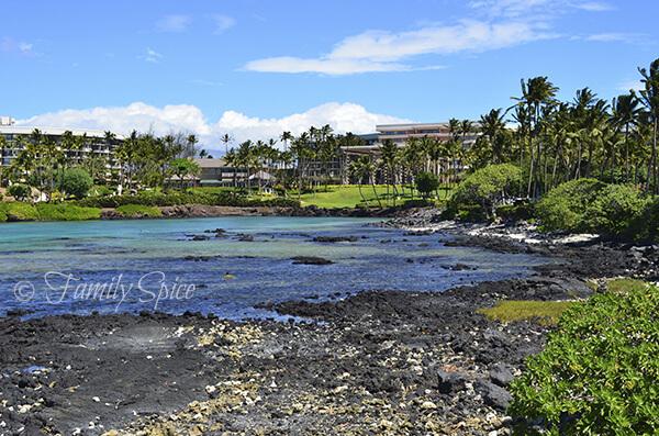 Hilton Waikoloa Village, Hawaii
