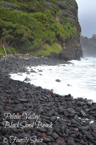 Pololu Valley Black Sand Beach
