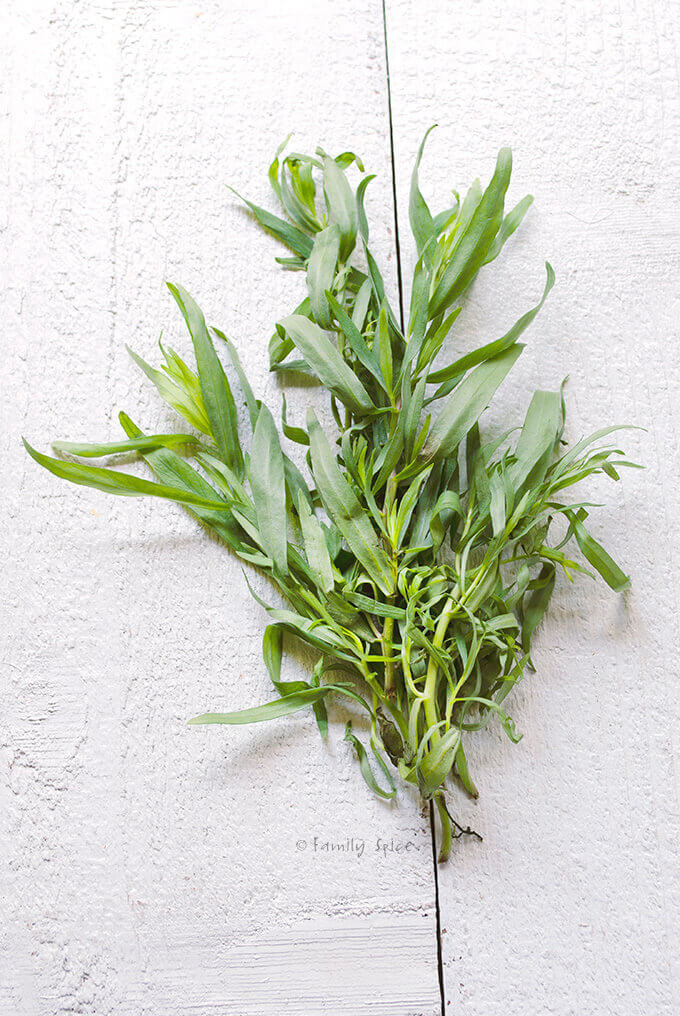 Fresh Tarragon by FamilySpice.com