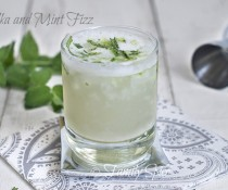Vodka and Mint Fizz by FamilySpice.com