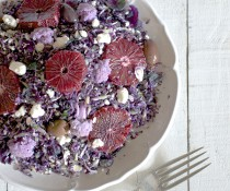 Eat the Rainbow: The Purple Salad by FamilySpice.com