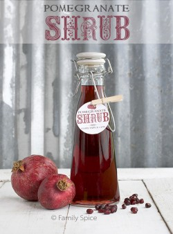 Homemade Holiday Gift Idea: Pomegranate Shrub by FamilySpice.com