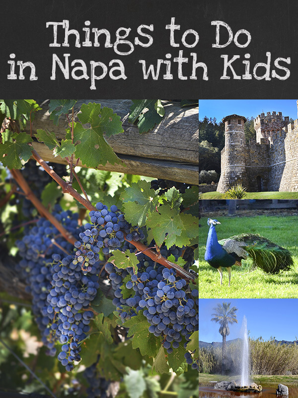 Things to Do in Napa with Kids by FamilySpice.com
