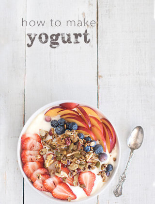 How to Make Yogurt by FamilySpice.com