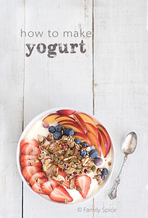 How to Make Yogurt by FamilySpice.com